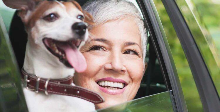 Viajar con mascotas con seguridad