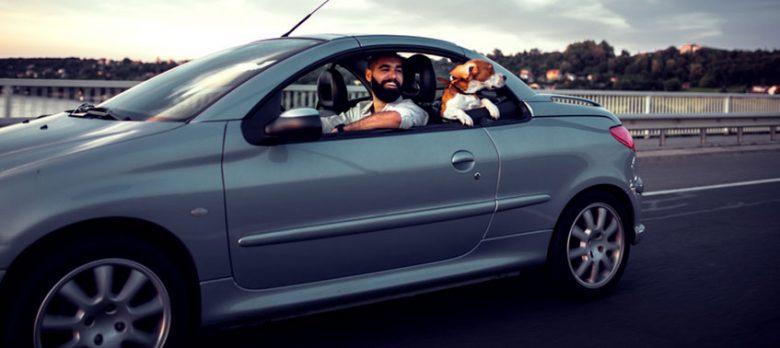 Las coberturas menos conocidas de los seguros de auto, un tema con mucho recorrido