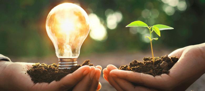 Los seguros de caución para energías renovables: protegiendo el desarrollo sostenible